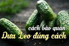 cach-bao-quan-dua-leo