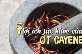 loi-ich-cua-ot-cayenne