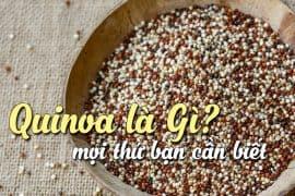 quinoa-la-gi